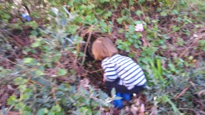 small boy peering into bushes