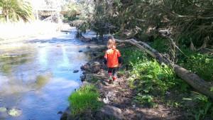 A leading me along Merri Creek