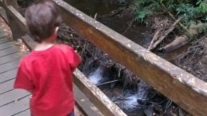 Small waterfalls at Wirrawilla