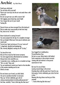 Poem of gratitude to my dog