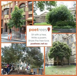 sit with a tree, write a poem, share the tree-love, poetrees.net.au